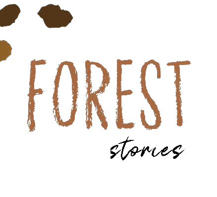 Forest Stories